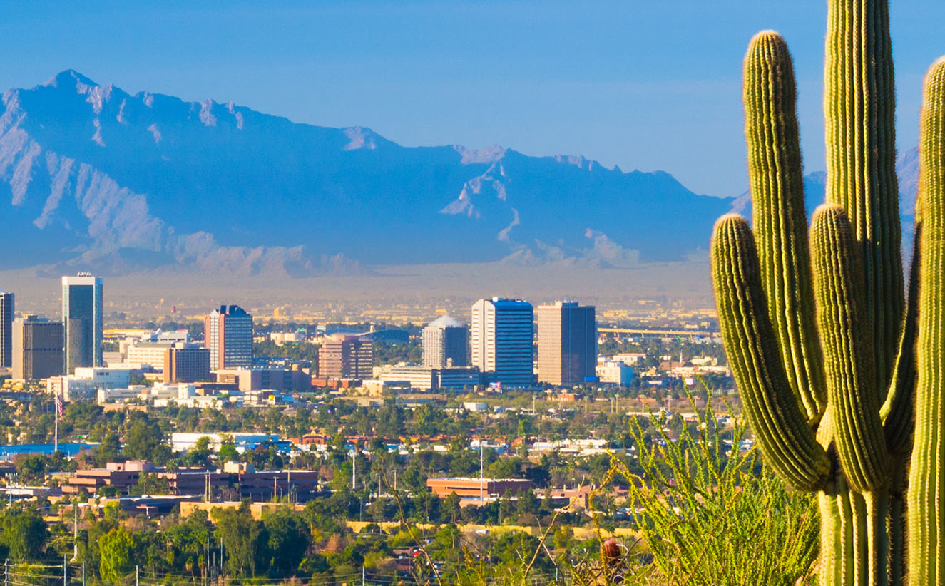 Image of downtown Phoenix, Arizona with a cactus in the foreground and buildings and mountains in the background